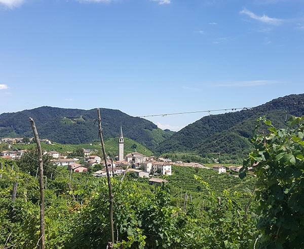 Vineyards & Castles